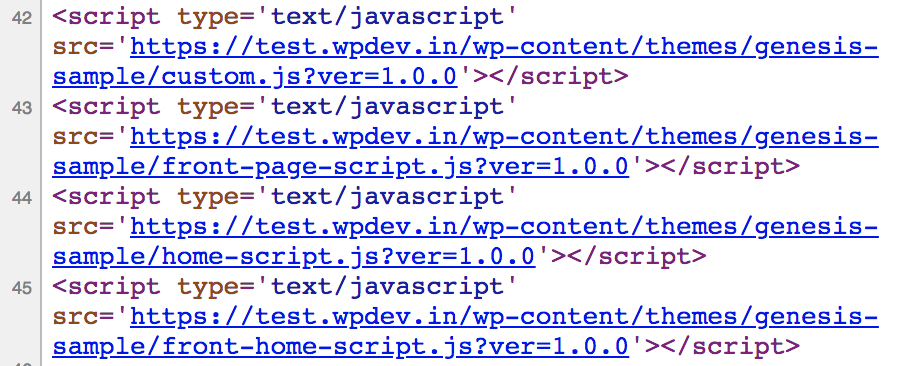 Conditional Tags to Load custom.js script