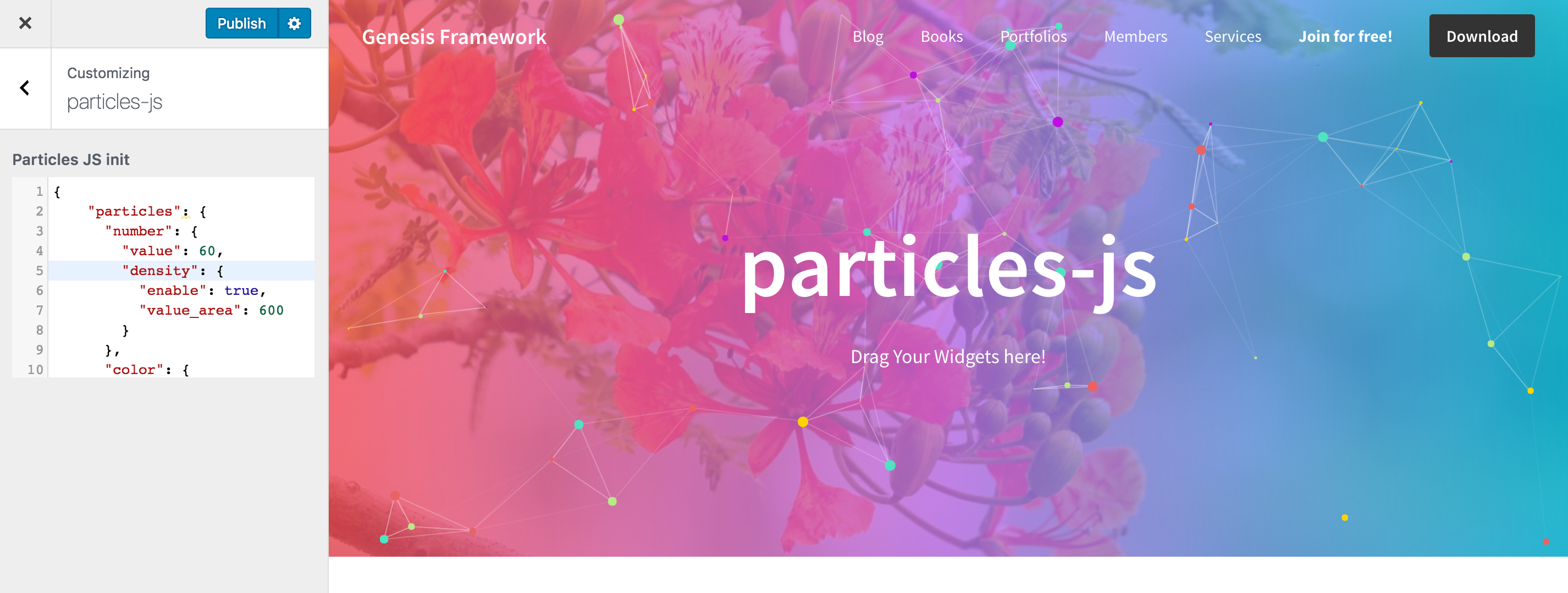 Particles js Background Section using Customizer in Genesis